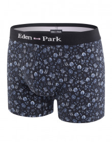Boxer Eden park G36 (039)