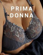 Deauville (Nightshadow) by Prima Donna
